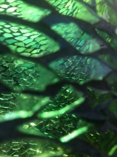 Nahaufnahme grünes Säule